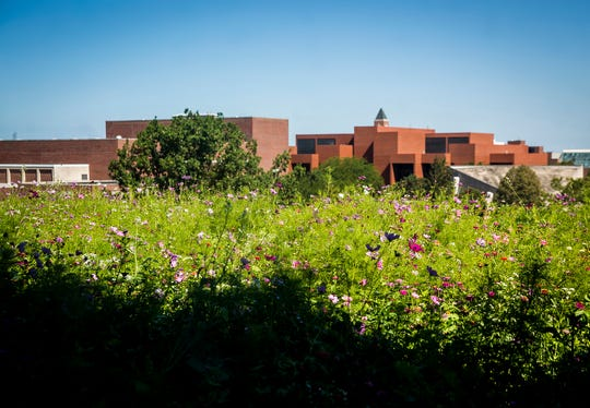 Ball State University's new Health Professions Building features a green roof that reduces storm water runoff, conserves energy, curbs noise and air pollution and provides wildlife habitat.