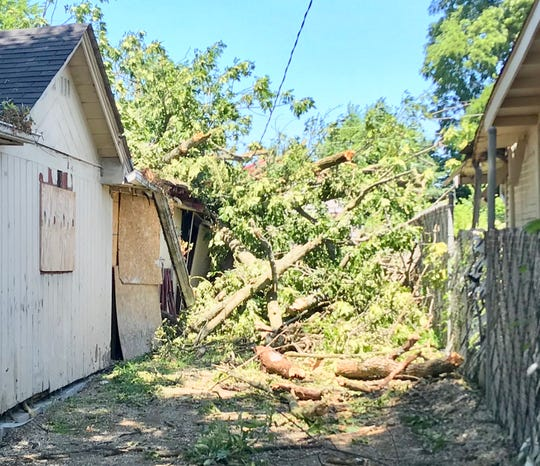 A tree fell on a vacant Buckeye Lake home on Central Avenue on Thursday evening.