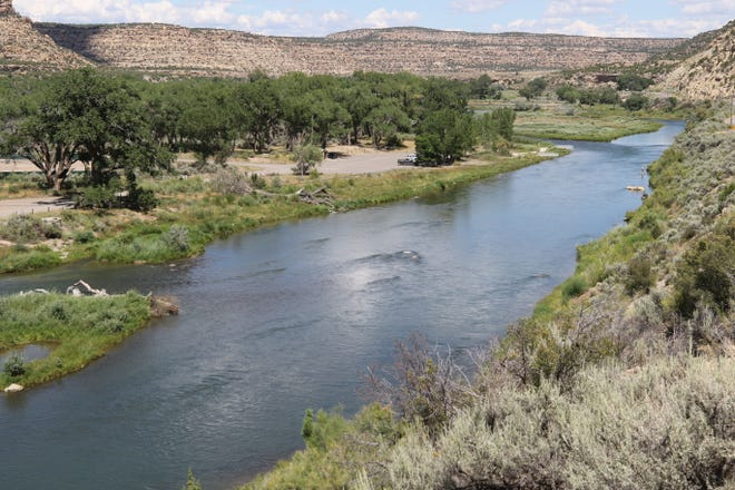The Quality Waters section of the San Juan River is one of the more popular trout fishing destinations in New Mexico, attracting anglers from all over.