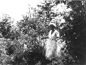 Mary Swords Debaillon, a native of Opelousas, in her garden near Lafayette sometime in the late 1920s to early 1930s. She changed Louisiana horticulture and is credited with helping to save the native Louisiana iris.