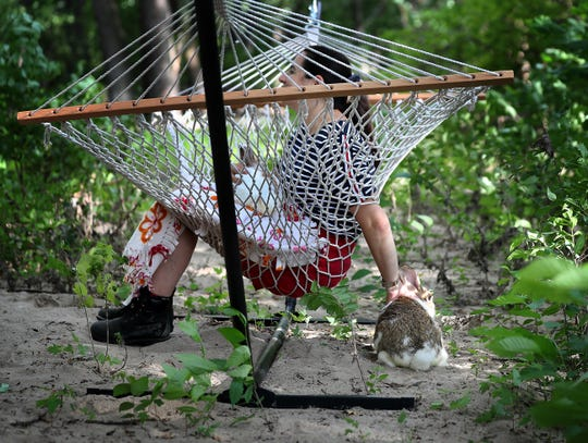 Lana Krakovskiy, from Brooklyn, NY, held one rabbit and petted one hopping by while seated on a hammock Monday, July 29, 2019, near Newport, MN. Krakovskiy, who along with her daughter Natalie Krakovskiy, 13 years old, not pictured, came from New York specifically to visit the island as a prize for Natalie winning a Peace Bunny Island essay contest. (David Joles/Star Tribune)