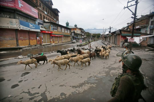 Indian paramilitary soldiers guard as a Kashmiri livestock seller crosses a street ahead of Eid al Adha during a security lock down in Srinagar, Indian controlled Kashmiri, Saturday, Aug. 10, 2019.