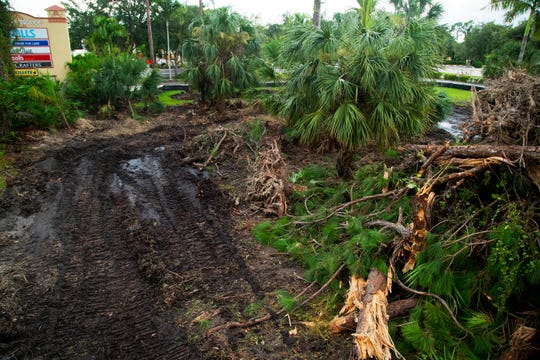 Land is being cleared in the Cypress Trace Shopping Plaza in Fort Myers for the California-based pizza restaurant Blaze Pizza.