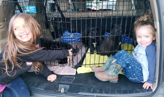 Rayna and Leah Souverbrielle prepare to say goodbye to a litter of pups successfully fostered and ready to be returned to Animal Village NM for adoption.