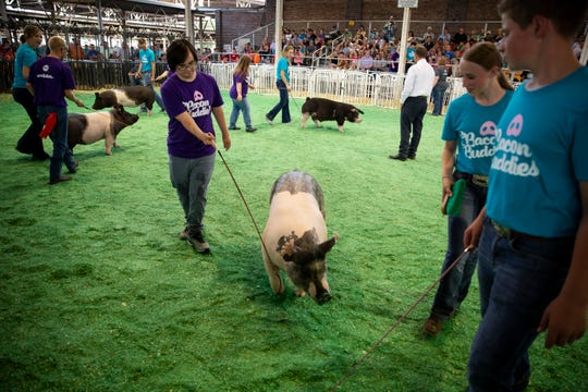 Ian Kastner, 20 of Des Moines shows his pig during the Bacon Buddies swine show at Iowa State Fair on Saturday, Aug. 10, 2019 in Des Moines. Bacon Buddies is a new program that pairs people with special needs with FFA participants to show pigs.