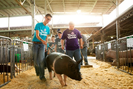 Isaac Baldus of Indianola, right, leads a pig to the start of the Bacon Buddies swine show with the help of mentor Walker McDermott, left, during the Iowa State Fair on Saturday, Aug. 10, 2019 in Des Moines. Bacon Buddies is a new program that pairs special needs teens with FFA participants to show pigs.