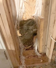 The Estes Park Police Department posted this picture of the hole made in a home's wall by an escaping bear Friday night.