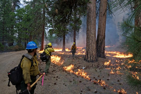 In this June 11, 2019 photo, firefighter Andrew Pettit, right, walks among the flames in Cedar Grove as fire ecologist Tony Caprio, center, take a photo and firefighter Julio Campos looks on during a prescribed fire in Kings Canyon National Park, Calif.