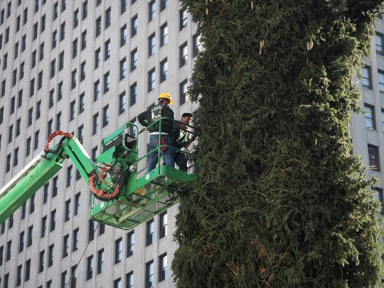 The Downtown Detroit Partnership is looking for a 60-foot Norway Spruce to become the city's next official Christmas tree.