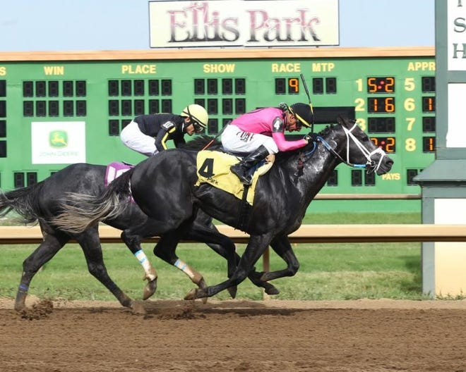 Ellis Park will reopen for Historical Horse Racing gaming Monday at 10 a.m CST.