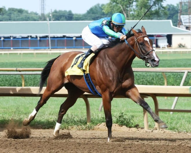 Go Google Yourself, ridden by Brian Hernandez, won Sunday's $125,000 Groupie Doll Stakes at Ellis Park.