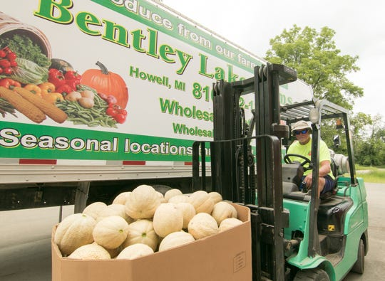 C.J. Turner, owner of Bentley Lake Farms, prepares to load Howell melons for delivery Monday, Aug. 12, 2019 at his Marion Township farm.