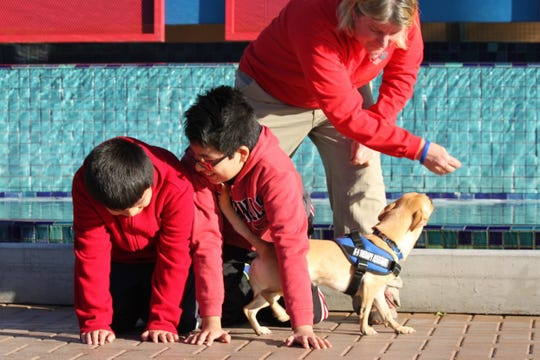Raising Hope Dogs is a Phoenix nonprofit that provides children with disabilities a dog to help them reach therapy goals.