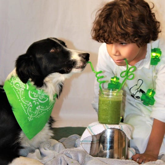 Raising Hope Dogs is a Phoenix nonprofit that provides children with disabilities a dog to help them reach therapy goals. Quanah Jorgenson, 8, drinks a green smoothie with border collie, Dandy, during a food therapy session.