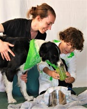 Raising Hope Dogs is a Phoenix nonprofit that provides children with disabilities a dog to help them reach therapy goals. Quanah Jorgenson, 8, practices feeding with his therapist and pet during a food therapy session.