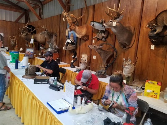 Artists are hard at work at the Game Fair in the Minnesota Taxidermy Guild booth next to the Art Barbarians. Game Fair's second weekend runs Friday through Sunday in Ramsey at the Armstrong Kennels Ranch.