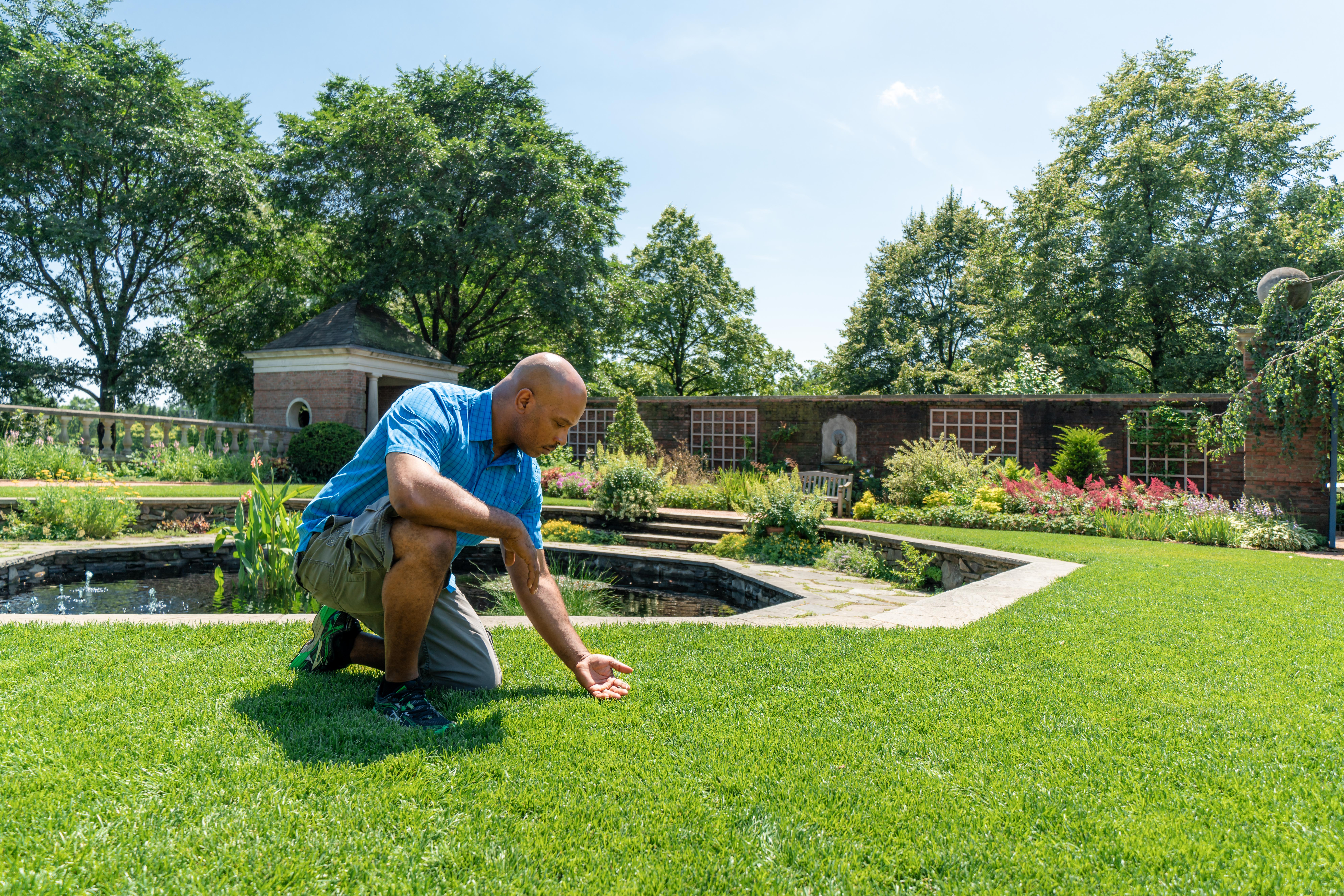How Long To Water Grass And Other Lawn Care Answers