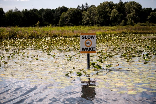 No Wake signs are posted near houses along Goguac Lake on Friday, Aug. 9, 2019 in Battle Creek, Mich.