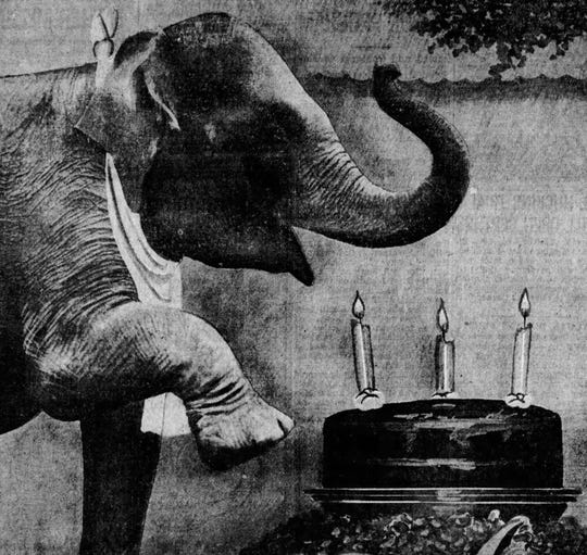From 1930: Baby Mine celebrates her third birthday with a cake and candles. Thousands of Iowa children and seven other elephants were invited to the Iowa State Fairgrounds for the show.