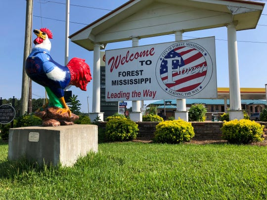 This photo shows one of many painted roosters around Forest, Miss., standing by the city's welcome sign Monday, Aug. 12, 2019. Forest proclaims its civic pride in poultry with brightly painted chicken statues planted in front of businesses across town, but some workers feel like they have few other options