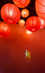 The entrance hallway of Dragon King's Daughter, an Asian fusion restaurant on W. Market Street in New Albany, In., is decorated with Japanese lanterns, and a video of a swimming fish is projected on the wall.08 August 2019