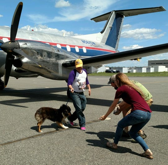 Wings of Rescue President Ric Browde make the presentations as military-veteran couple Gregory and Victoria Hudler are reunited with their stolen dog, Jodie, at Morristown Municipal Airport August 10, 2019. After two years apart, the dog was discovered via microchip in a Tennessee animal shelter.