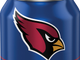 Arizona Cardinals' team can