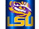 LSU team bottle