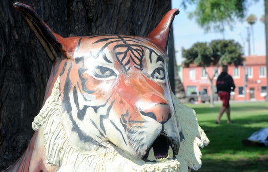 A tiger sculpture stands near a tree at Plaza Park in Oxnard. The sculpture is one of four on loan from The Squire Foundation, a nonprofit that installs public art. The others are a jaguar, an eagle and a ram.