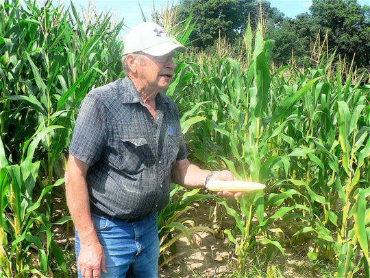 "Cliff Hageman says his corn on the hill ""may make it."""