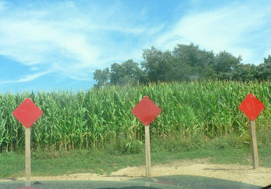 The new housing development road stops abruptly at the Cliff Hageman corn field.