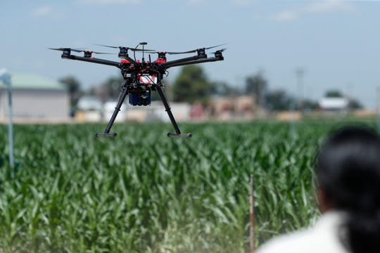 In this Thursday, July 11, 2019, photograph, United States Department of Agriculture engineering technician Kevin Yemoto guides a drone into the air at a research farm northeast of Greeley, Colo.