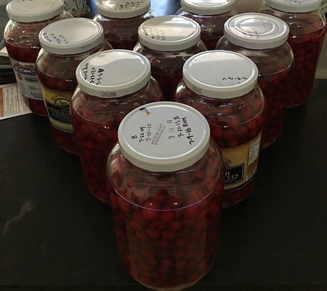 "Jim Montgomery has vintages of cherry bounce dating back as far as 2015, (2016 batch pictured) though he says after a year in the jars they all pretty much taste the same, like ""spiked cherry juice."""