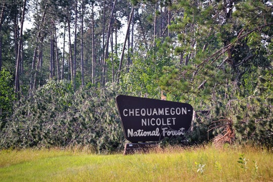 Downed trees are seen behind a sign for the Chequamegon-Nicolet National Forest on Highway 32 in northern Oconto County.