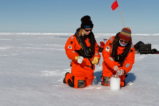 Scientists collect snow samples in the Arctic. Even in the Arctic, they found the snow is polluted with microplastics.