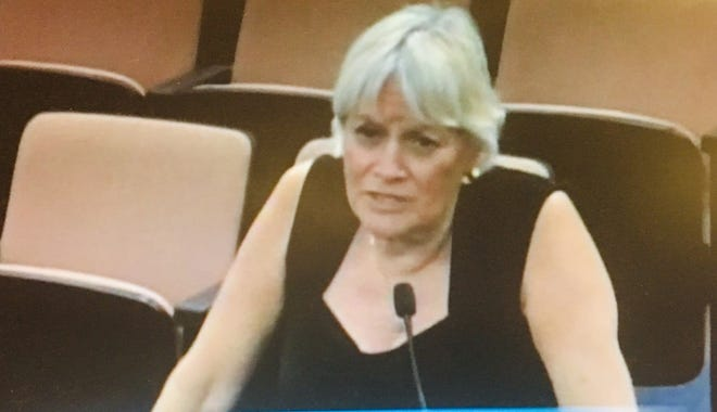 Cocoa-area resident Ilene Davis addresses the Brevard County Commission in support of a proposal to reward residents for ideas that could save county government money.