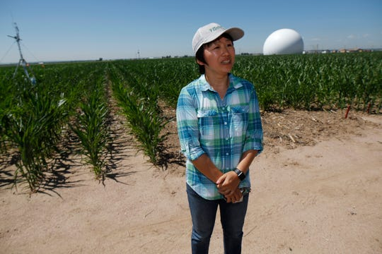 In this Thursday, July 11, 2019, photograph, Huihui Zhang of the United States Department of Afgriculture talks about efforts to use technology at a research farm northeast of Greeley, Colo. Researchers are using drones carrying imaging cameras over the fields in conjunction with stationary sensors connected to the internet to chart the growth of crops in an effort to integrate new technology into the age-old skill of farming.
