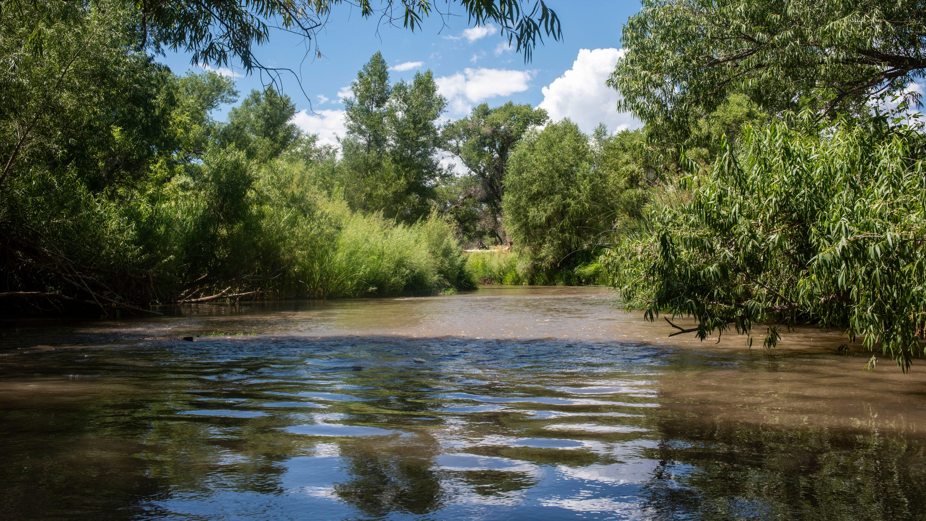 How is the Verde River doing? Conservation groups give the watershed a C-plus