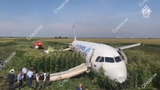 A passenger jet made an emergency landing in a field outside of one of Moscow's airports Thursday after colliding with a flock of birds, injuring at least 23 people, Russian officials said.