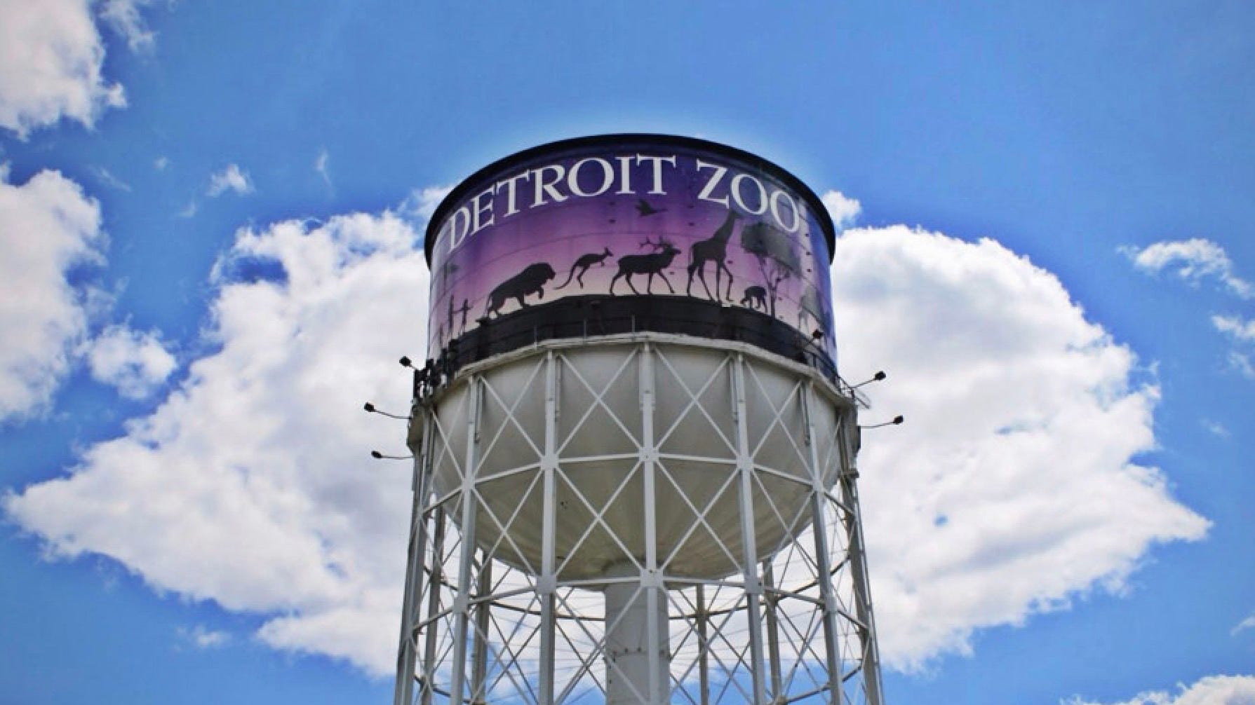 Detroit Zoo To Open Monday Only To Members With Reservations