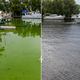 Before and after images show devastation, recovery from toxic algae in Southwest Florida