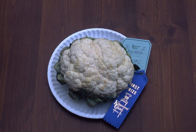 Thiscauliflower was awarded a blue ribbon because it is pure white;has attached, protective leaves trimmed; firm curd at least 4 inches in diameter; and head is free of damage.