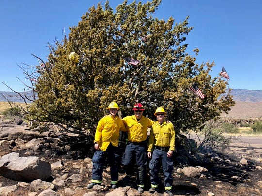 The Mystery Christmas Tree along Interstate 17 was saved from a brush fire on Aug. 16, 2019.