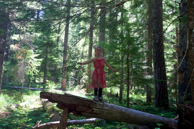 The Pika-Fir Trail leads 2 miles round-trip to Fir Lake through a shaded forest.