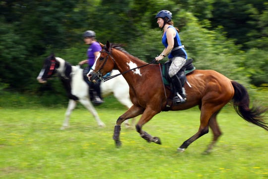 All breeds of horses or even ponies can be great distance mounts. Here Milo and rider Laura Savatski ride the beautiful trails of the Kettle Moraine completing a 25 mile competitive trail ride.