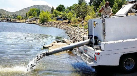 Fish stocking project by the California Department of Fish and Wildlife