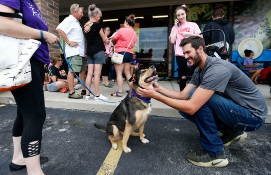 Haden Ramsey pets Sasha, a 5-year-old Rottweiler-German shepherd mix available for adoption through Rescue One, outside Petsway on Battlefield Road during Clear the Shelters day on Saturday, Aug. 17, 2019.