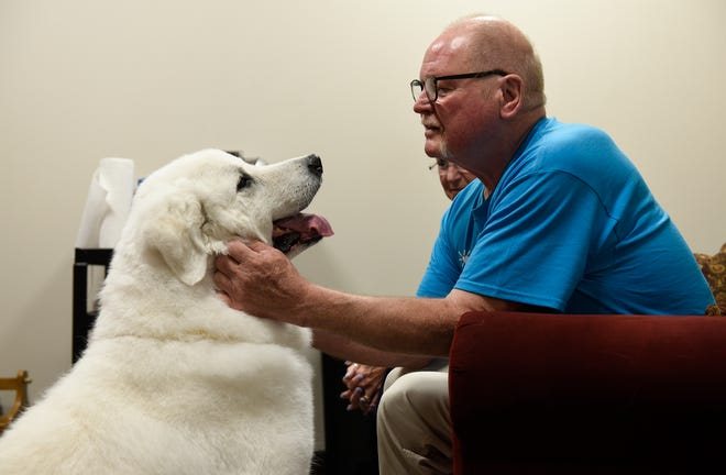 Tom Harlander shares a moment with his dog Rose Friday, Aug. 16, 2019, at Anna Marie's Alliance. Harlander and certified therapy dog Rose have visited over 200 times in the past six years.