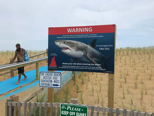 Signs warn visitors of the danger of sharks at Nauset Beach in Orleans, Massachusetts.