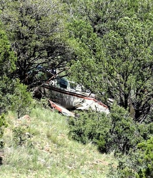 The airplane that crashed is nearly covered by bushes and trees.